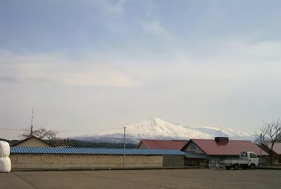 由利高原ホースパーク28