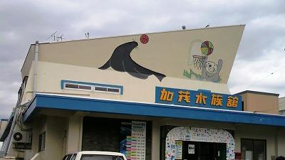 加茂水族館1001338
