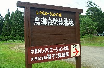 中島台0021