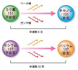 20110810-5.jpg