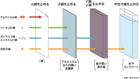 20111110-2.jpg