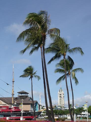 alohaタワー