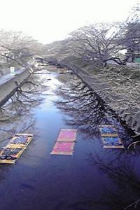 五条川ののんぼり洗い