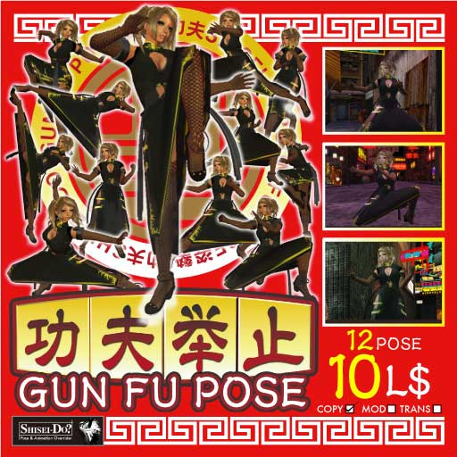 Shisei-Do Gun Fu pose