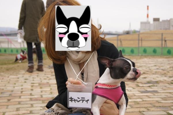 関ボス春2011・2 076_edited-1