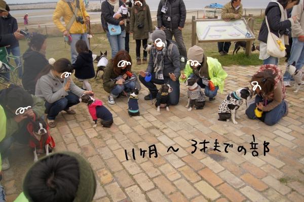 関ボス春2011・2 143_edited-1
