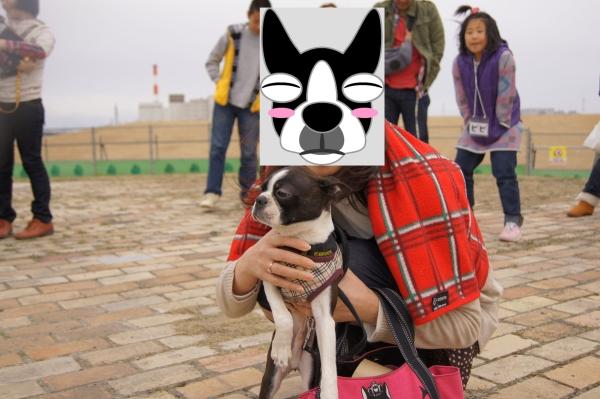 関ボス春2011・2 142_edited-1