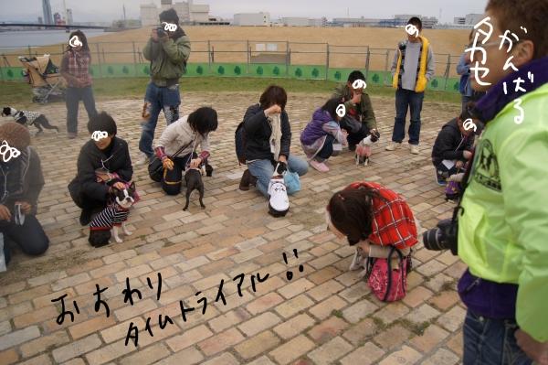 関ボス春2011・2 135_edited-1