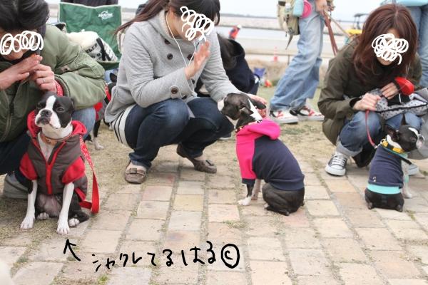 関ボス2011春・1 012_edited-1