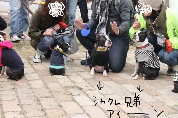 関ボス2011春・1 013_edited-1