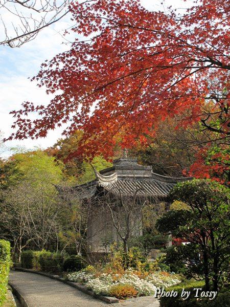 小蘭亭と紅葉