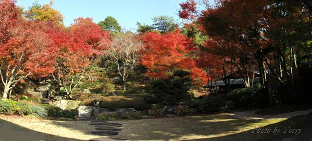 北山山荘の庭
