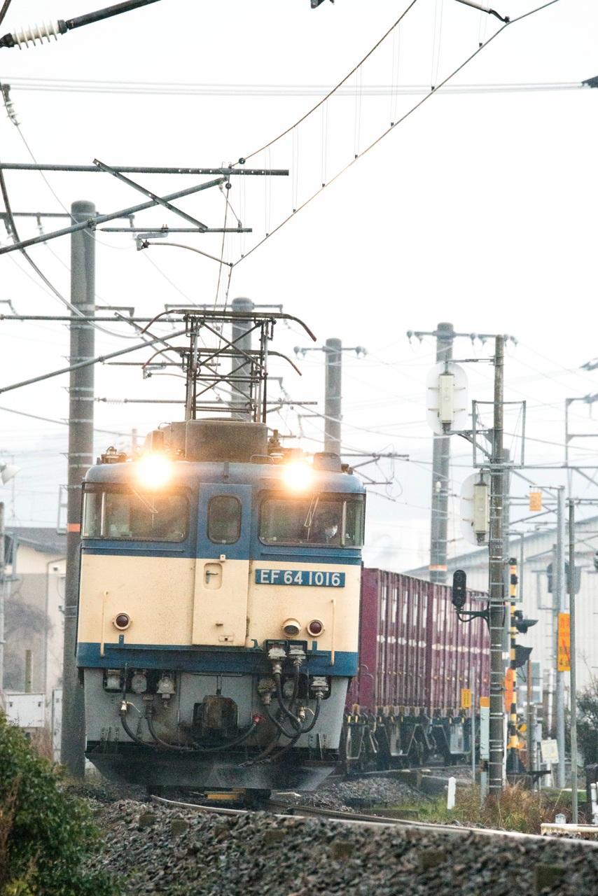 0122hakubisen_01