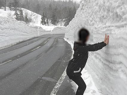 春の八甲田 雪の回廊 干物女-1