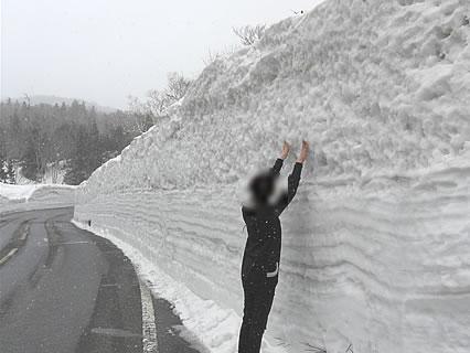 春の八甲田 雪の回廊 干物女-2