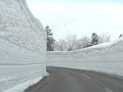 春の八甲田 雪の回廊-1