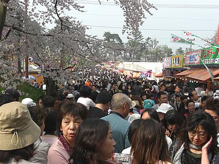 弘前公園 さくらまつり 人混み