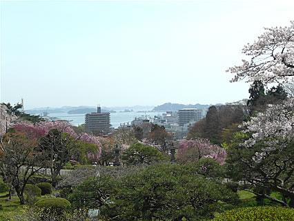 塩竈神社から見える塩竈湾