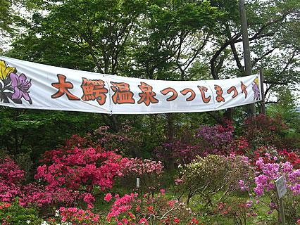 茶臼山公園 大鰐温泉つつじまつり