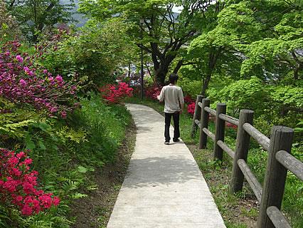 茶臼山公園 大鰐温泉つつじまつり 俳句の小径と旦那くん