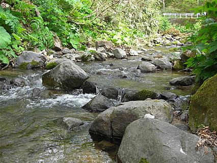 浅瀬石川(温川山荘近辺)-1