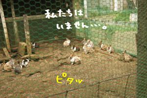 DSC01560-1.jpg