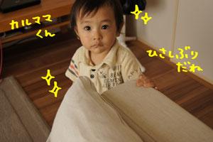 DSC01572-1.jpg