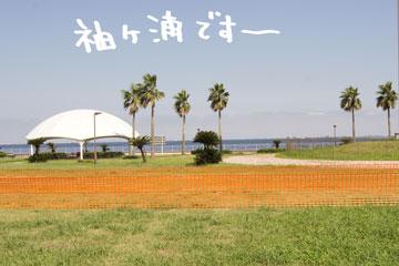 DSC01991-1.jpg