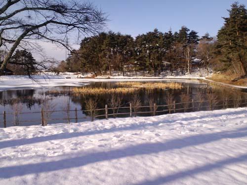 雪窓湖H25冬
