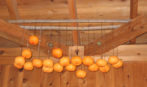H211118干し柿