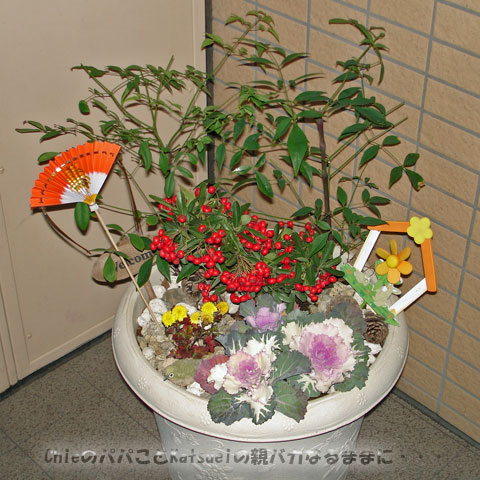 寄せ植え2009-12-31