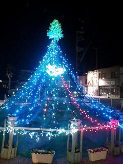 091210matsu-c tree