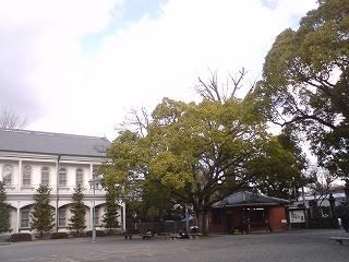 Kyoto2011J 008