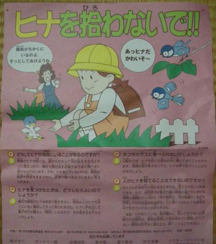 IMGP4535-crop_convert_20100519231122.jpg