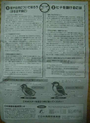 IMGP4536-crop_convert_20100519231257.jpg