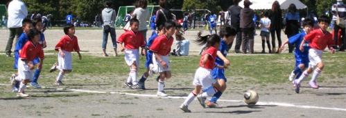2011,04-24 (55)