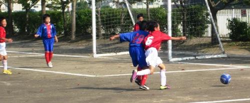 owada2011 (10)