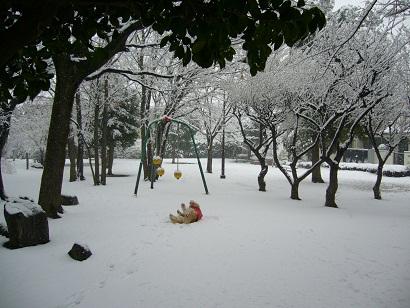 tsuika02