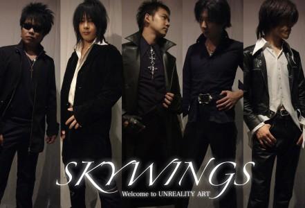 skywings_.jpg