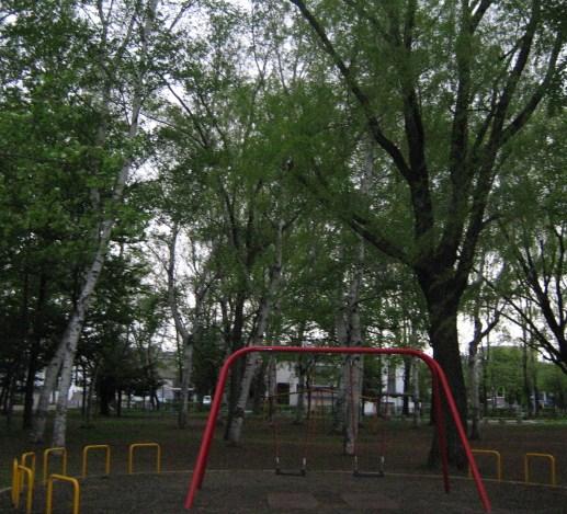 011_20100528094708.jpg