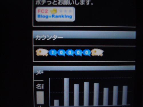 DSC06255_convert_20130205191123.jpg