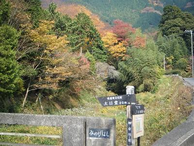 2009_1129yabituoiso0032.jpg