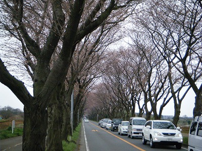 2010_0328DOUSHI0029.jpg