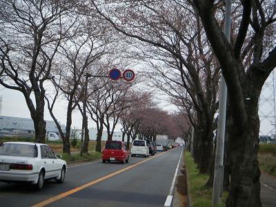 2010_0328DOUSHI0030.jpg