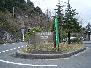 2010_0424yabitsu0010.jpg