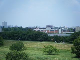2010_0606tamako0041.jpg