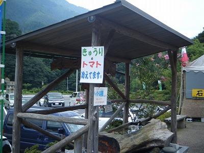 2010_0820natsuyasumicamp0040.jpg