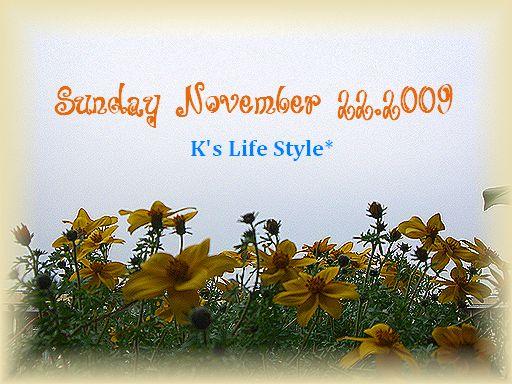 11月22日曇りのち雨