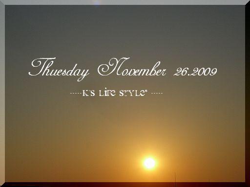 11月26日 晴れ暖かい日