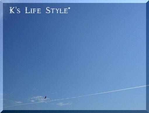 飛行機雲と鳥.